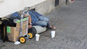 Shelter homeless charity